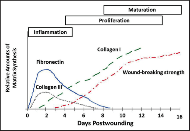 acute-wounds-graph